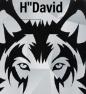 """H""""D4vid"""